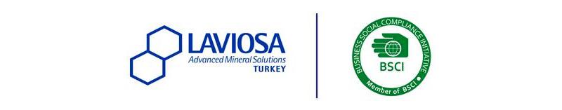 laviosa_informa_2021-3_notizie-dalla-turchia-bsci