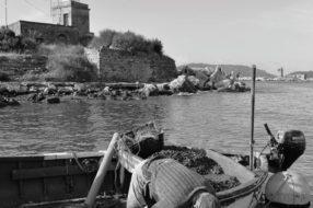Muscolai - Reportage fotografico di Claudio Barontini