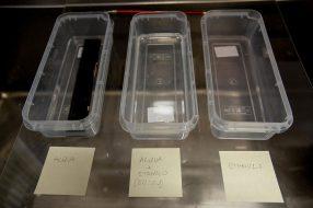 Reportage restauro archivio Dainelli